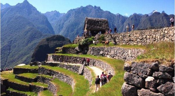 A Taste of Peru - Premium