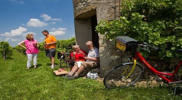 Cycling Along the Romantic Rhine