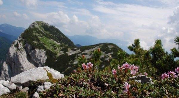 Lakes & Mountains of Slovenia