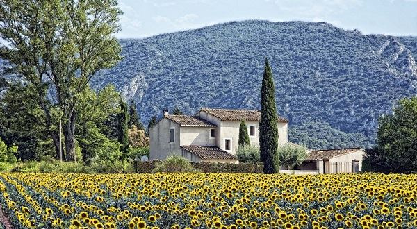 Self-Guided Cycling in Provence & the Luberon