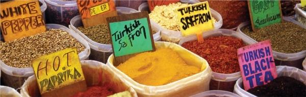 Bite-size Break Istanbul ERZI